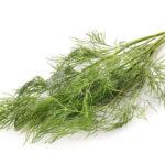 肌の糖化対策の食べ物や植物まとめ